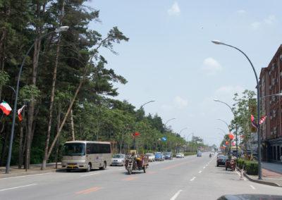 Miasto Erdobaihe na czas T20 zostało udekorowane flagami narodowymi